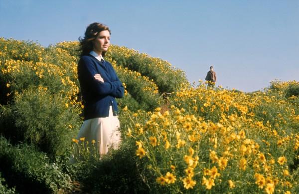 Verano del 42 (1971) de Robert Mulligan
