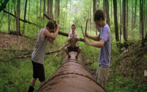 The kings of summer (2013) de Jordan Vogt-Roberts